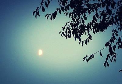 Photograph - Glowing Moon  by Mozelle Beigel Martin
