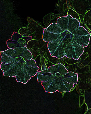 Photograph - Glowing Petunias by Karen Harrison
