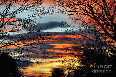 Photograph - Glowing Silhouetted Sunset by Sandra Huston