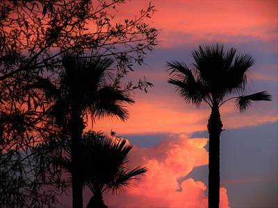 Photograph - Glowing Sky by Mistys DesertSerenity