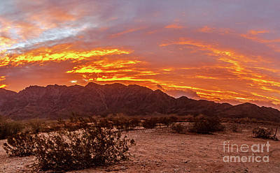 Photograph - Glowing Sunrise by Robert Bales