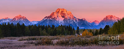 Photograph - Glowing Tetons Over The Trees by Adam Jewell