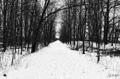 Glowing Winter Walk Original by Phill Doherty