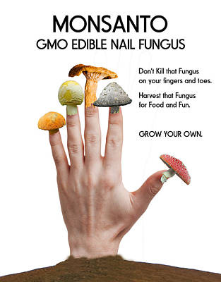 Lucille Ball Royalty Free Images - GMO Nail Fungus Royalty-Free Image by Bruce Iorio