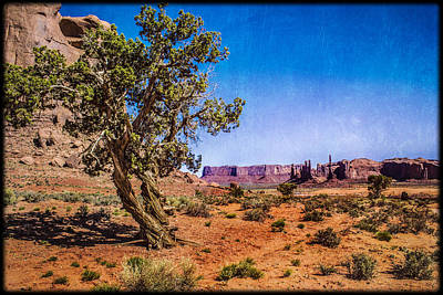 Gnarled Utah Juniper At Monument Vally Art Print