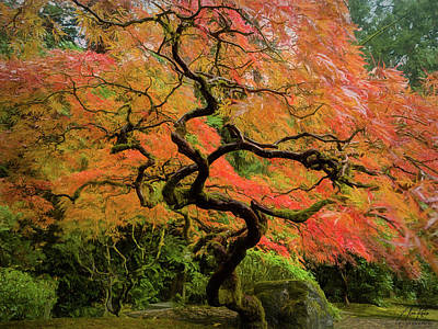 Kitchen Spices And Herbs - Gnarly Maple by Alan Kepler