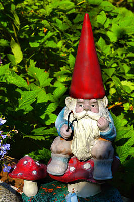 Photograph - Gnome Fishing by Harry Spitz