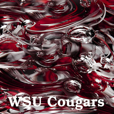 Photograph - Go Cougars - Wsu by David Patterson