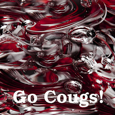 Photograph - Go Cougs by David Patterson