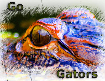 Photograph - Go Gators by Sheri McLeroy