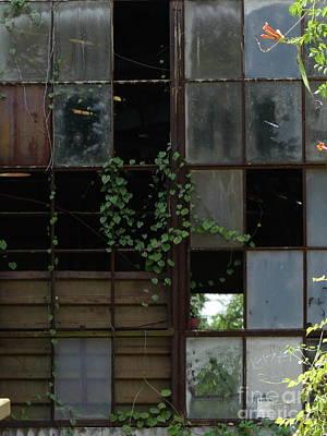 Photograph - Go Green Go by Brian Boyle