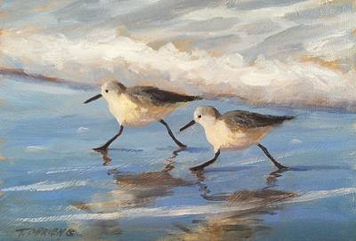 Go Sandpipers Original by Tina Obrien