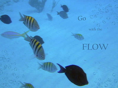 Photograph - Go With The Flow by Nadine Berg