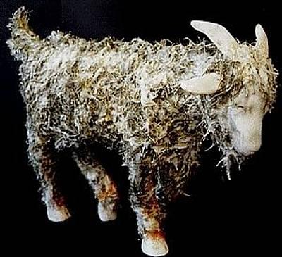 Goat Mixed Media - Goat I I by Cameron Hampton PSA