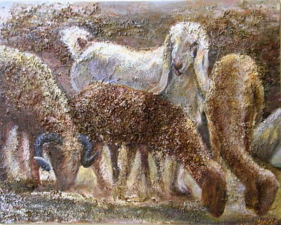 Goat With Sheep Art Print by Sylva Zalmanson