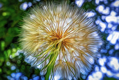 Photograph - Goat's Beard - The Inner Weed 4 - Paint by Steve Harrington