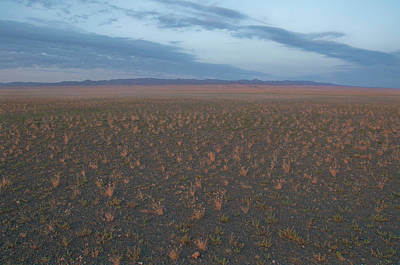 Photograph - Gobi Desert by Alan Toepfer