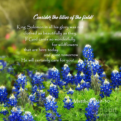 Photograph - God Cares For You Squared by TK Goforth