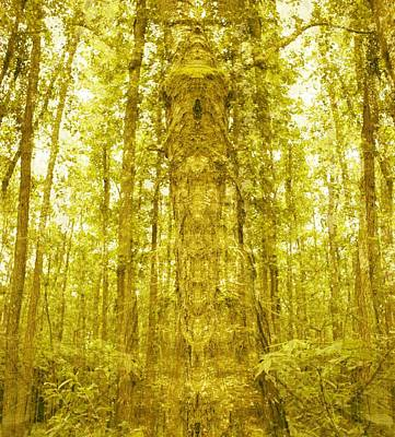 Fantasy Royalty-Free and Rights-Managed Images - God of trees by Roman Aj