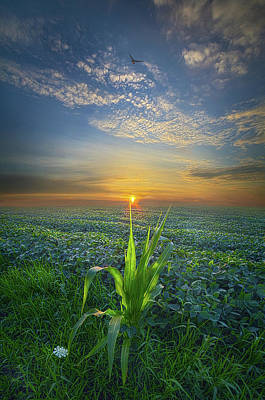 Photograph - God Speed by Phil Koch