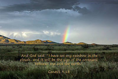 Photograph - God's Covenant To The Earth by Lon Dittrick