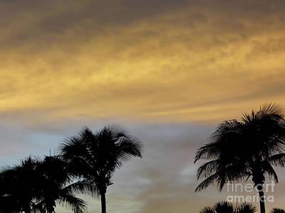 Photograph - God's Florida Sunset by D Hackett
