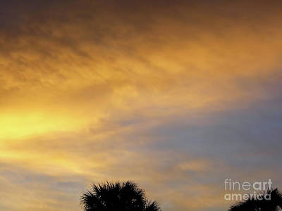 Photograph - God's Golden Sky by D Hackett