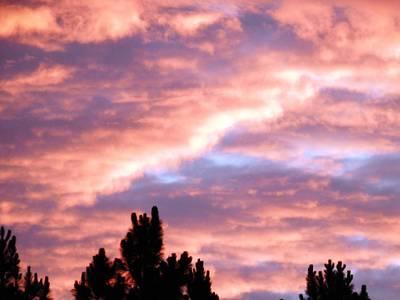 Photograph - Gods Painted Summer Sky by Belinda Lee