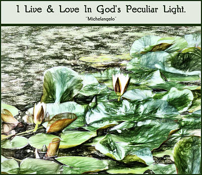 Photograph - Gods Peculiar Light by Leslie Montgomery