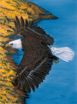 Eagle Painting - God's Viewpoint by Wayne Pruse