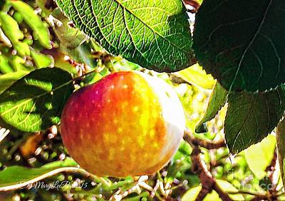 Going Apple Picking Print by MaryLee Parker