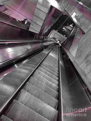 Photograph - Going Down by Jenny Revitz Soper