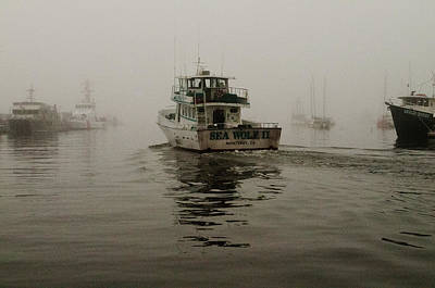 Photograph - Going Fishing On A Foggy Morning by Connie Cooper-Edwards