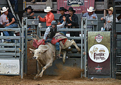 Bull Riding Photograph - Going For 8 by Bill Keiran