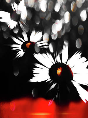 Daisies Photograph - Going Going Gone by Heather Joyce Morrill