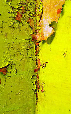 Painted Photograph - Going Green by Skip Hunt