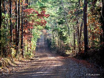 Art Print featuring the photograph Going Home by Betty Northcutt