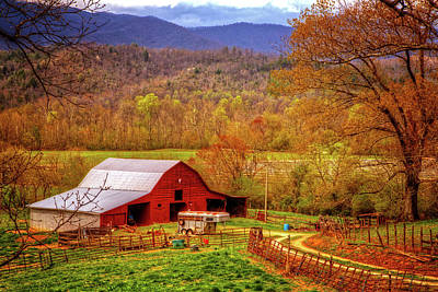Photograph - Going To Carolina In My Mind by Debra and Dave Vanderlaan
