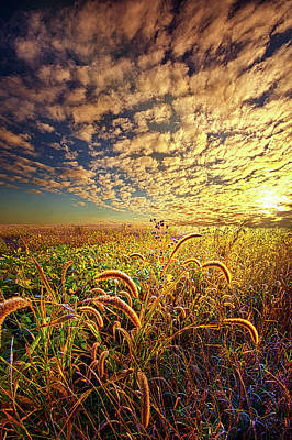 Unity Photograph - Going To Sleep by Phil Koch