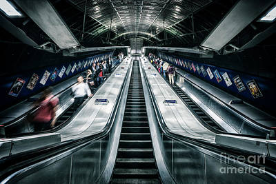 Photograph - Going Underground by Evelina Kremsdorf