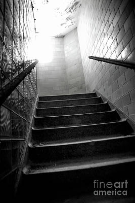 Photograph - Going Up? by Randall Cogle