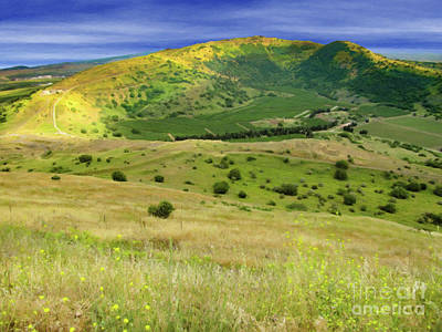 Digital Art - Golan Heights Oil Wisps Mute by Donna Munro