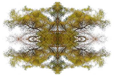 Spiritual. Geometric Photograph - Gold Dust by Debra and Dave Vanderlaan