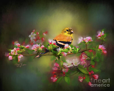 Digital Art - Gold Finch And Blossoms by Lena Auxier