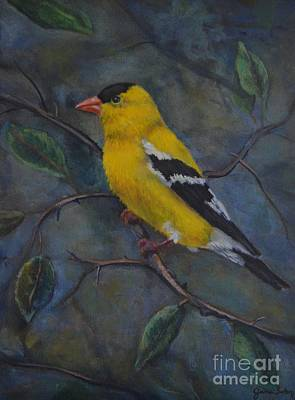 Painting - Gold Finch by Jana Baker
