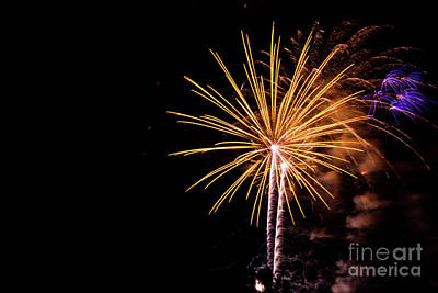 Photograph - Gold Fireworks by Suzanne Luft