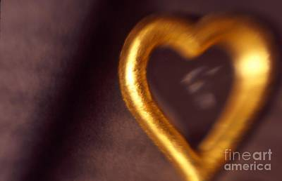 Photograph - Gold Heart Mirror by Tamarra Tamarra
