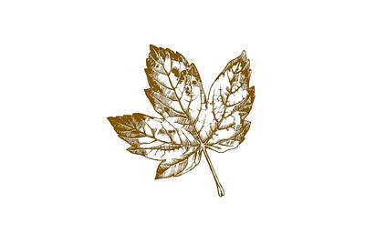Red Leaf Digital Art - Gold Leaf by Chastity Hoff