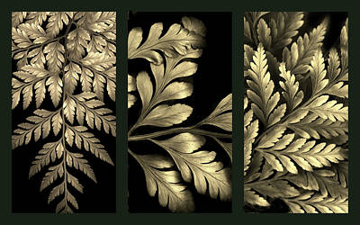 Photograph - Gold Leaf Triptych by Jessica Jenney