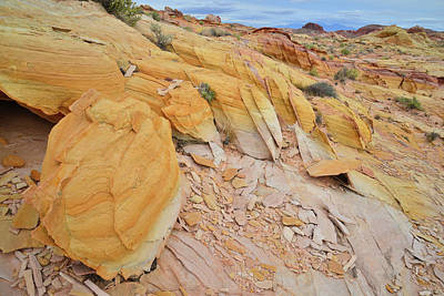 Photograph - Gold Nuggets Of Sandstone In Valley Of Fire by Ray Mathis
